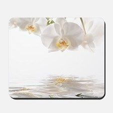 Orchids Reflection Mousepad