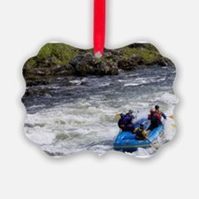 Rafters tackles the rapids on the Ornament