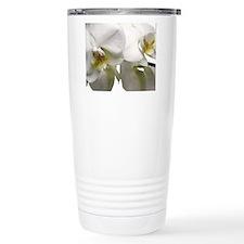 Orchid Phalaenopsis Travel Coffee Mug