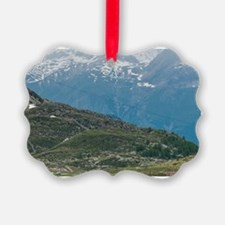Bernina Pass, Switzerland. Ornament