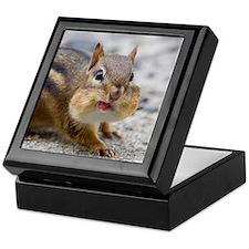 Funny Chipmunk Keepsake Box