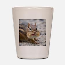 Funny Chipmunk Shot Glass
