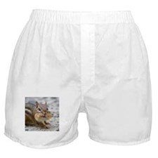 Chipmunk lovers Boxer Shorts