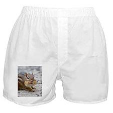 Unique Animal wildlife cute funny Boxer Shorts