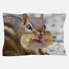 Funny Chipmunk Pillow Case