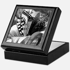 Black and White Butterfly Love Keepsake Box