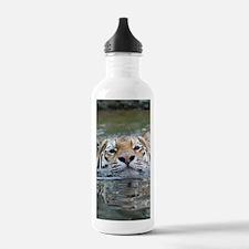 Cute Tigers Water Bottle