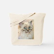 Ragamuffin Cat Tote Bag