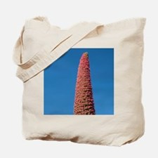 Las Canadas National Park. Endemic plant  Tote Bag
