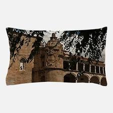 Conventual De San Benito Salorino, Ext Pillow Case