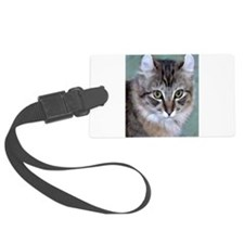 American Curl Cat Luggage Tag
