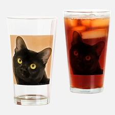 Bombay Cat Drinking Glass