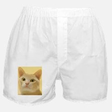 Burmese Cat Boxer Shorts