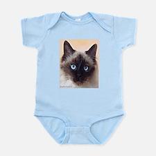 Ragdoll Cat Body Suit