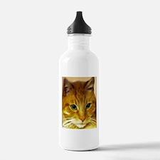 Orange Tabby Cat Water Bottle
