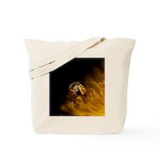Metasyrphus americanus Tote Bag