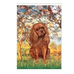 Spring and Ruby Cavalier Postcards (Package of 8)
