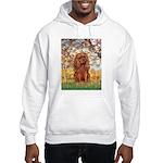 Spring and Ruby Cavalier Hooded Sweatshirt