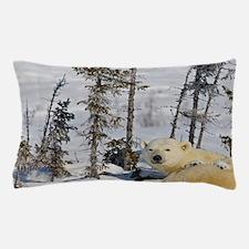 Wapusk National Park. Polar bear cubs  Pillow Case