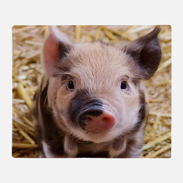 Cute Pig Throw Blanket