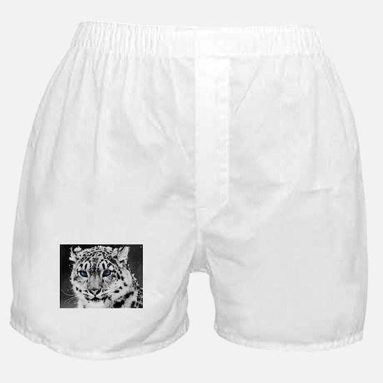 Cute Leopard Boxer Shorts