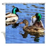 Mallard duck Shower Curtains