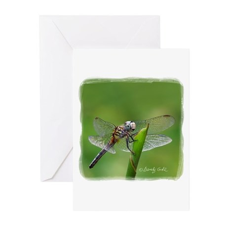 Happy Dragonfly-- Greeting Cards (Pk of 10)