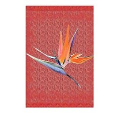 Pink Bird of Paradise Postcards
