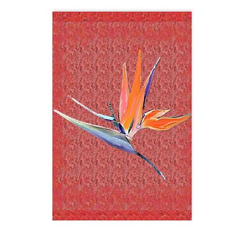 Pink Bird of Paradise Postcards