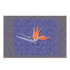 Blue Bird of Paradise Postcards
