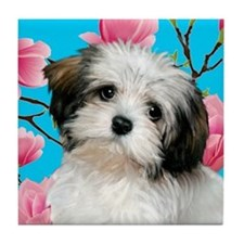 Havanese Dog Magnolia Blossoms Tile Coaster