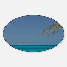 Solitary Beachgoer CAICOS, Salt Cay Sticker (Oval)