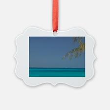 Solitary Beachgoer CAICOS, Salt C Ornament