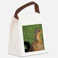Near Maligne Lake; summerumbian g Canvas Lunch Bag