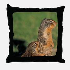 Near Maligne Lake; summerumbian groun Throw Pillow