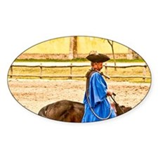 Kalcosa; Magyar Cowboy; Horse Bowin Decal