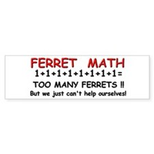 """Ferret Math"" Bumper Car Sticker"