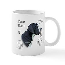 Mantle(n) History Mug