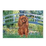 Bridge & Ruby Cavalier Postcards (Package of 8)