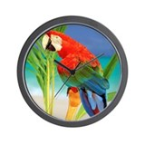 Parrot Basic Clocks