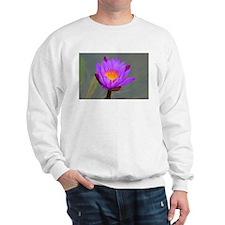 Funny Om out Sweatshirt