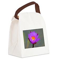 Cute Light up blue Canvas Lunch Bag