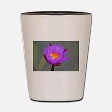 Unique Peace love massage Shot Glass