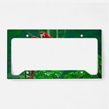 Parrot License Plate Holder