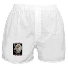 Mini satins are awesome Boxer Shorts