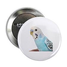 "Parakeet 2.25"" Button"