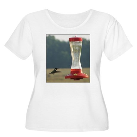 Hummingbird Women's +Size Scoop Neck T-Shirt