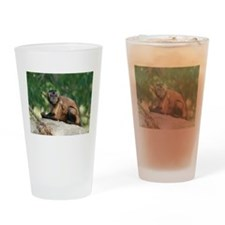 Cute Brown Capuchin Monkey Drinking Glass