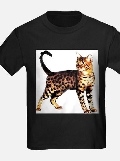 Bengal Cat: Raja T
