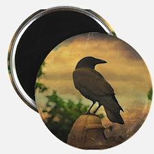 Retro Sky Crow Magnets